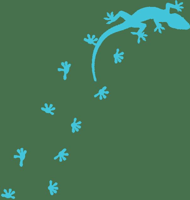 Design Image Gecko image