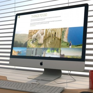 Website Design Dorset