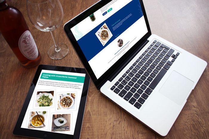 Website Design Fareham